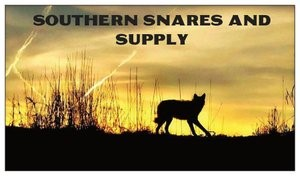 Southern Snares