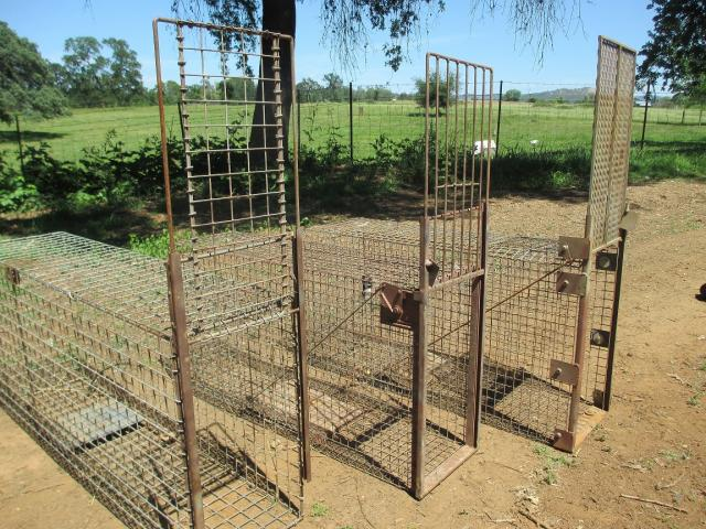 Bobcat Cages on ubbthreads