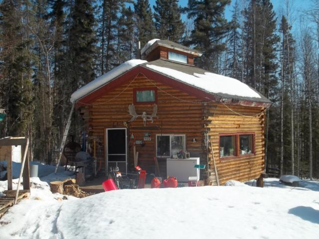 octagon log cabin wilderness trapping and living