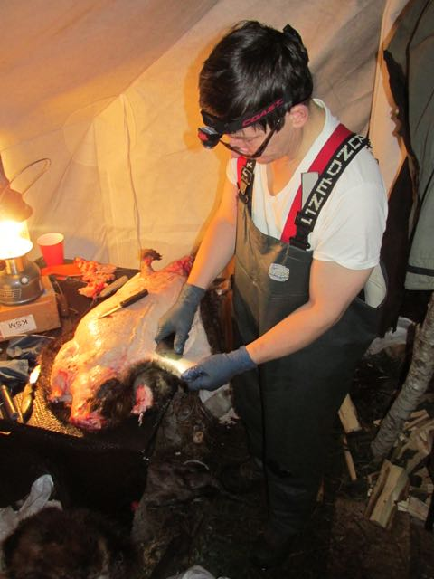 Do this in an arctic oven. ;0) & Is an Arctic Oven better than a Wall Tent | Wilderness Trapping ...