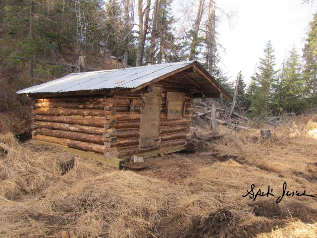 Almighty log cabin building thread wilderness trapping for Building a mountain cabin